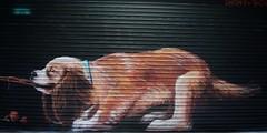 London Street Art 2018/041 (gary8345) Tags: 2018 uk unitedkingdom greatbritain britain england london southlondon croydon graffiti streetart urbanart art artist artistic snapseed londonist irony boe
