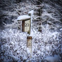 23 (tim.perdue) Tags: 23 birdhouse highbanks metro park columbus ohio snow winter meadow field