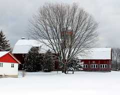 A Farm in Winter (pegase1972) Tags: easterntownships estrie stanbridgeeast barn grange farn ferme winter hiver neige snow canada quebec québec qc