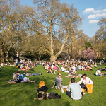 People enjoying a sunny day in the Park thumbnail
