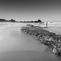 (Masako Metz) Tags: beach ocean sea rocks blackandwhite monochrome oregon coast pacific northwest usa america nature landscape seascape waterscape outdoor scenery coastal coastline shore shoreline