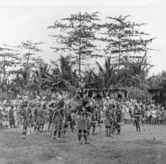 Noordkust-Koninginnedag 1958-014 (Stichting Papua Erfgoed) Tags: papua nieuwguinea nederlandsnieuwguinea irianjaya stichtingpapuaerfgoed papuaheritagefoundation westirian irianbarat pace newguinea