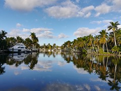 A look at the neighbourhood that we stayed in Fort Lauderdale, great for walking the gorgeous dog.