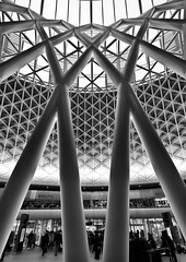 Criss-cross (Joseph Pearson Images) Tags: building architecture abstract kingscrossstation roof station london blackandwhite bw mono