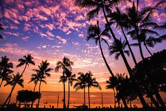 Waikiki Beach Sunset Honolulu Hawaii (Anthony Quintano) Tags: sunset hawaiiansunset waikikibeach honolulu hawaii hawaiisunset hawaiiweather hiwx palmtrees clouds sky sailboats sailing