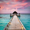 Follow me on Instagram: giulia_cetto (alessandrocetto) Tags: water mild calm peaceful relaxing perfect island sand beach seascape nature clouds light blue pink sky wedding love couple dinner romantic ocean exotic tropic