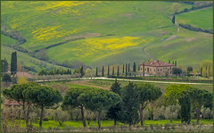 14 aprile 2018, veduta panoramica dall'alto di Montepulciano (adrianaaprati) Tags: montepulciano toscana panorama tuscany italy landscape house oldhouse grass meadow flowers april spring yellow green trees cypresses field pines