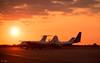 Northolt's sunny lineup (Dan Elms Photography) Tags: northolt sunset sun sky aviation aviationphotography raf planes plane static staticdisplay dan danelms danelmsphotography talldan76 pembroke percivalpembroke casa bae146 nightshoot northoltnightshoot rafnortholt