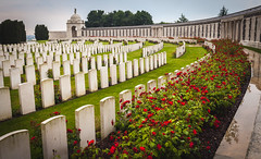 Always in Arms (B.M. Dodson) Tags: great war cemetery memorial soldier graveyard tyne cot flower rain solemn history lest we forget first world brothers united
