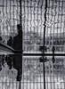 MET Reflections (iii) (REA // Photography) Tags: abstract art bw blackwhite egypt egyptian met metropolitanmuseumofart museum nyc newyorkcity reflections reflectingpoolsacklerwing templeofdendur water