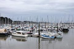 La Trinité sur Mer - (Noir et Blanc 19) Tags: bretagne latrinitésurmer bateaux voiliers sony a77
