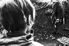 The Observer (stefankamert) Tags: stefankamert observer noir noiretblanc blackandwhite blackwhite bw baw hair head ricoh gr grd grdiv grain dof bokeh forest