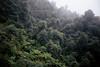 Katoomba (.Kaisu.) Tags: kodak portra asahipentaxspotmatic pentax spotmatic spii supertakumar3535 supertakumar australia filmphotography analogue katoomba