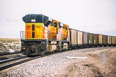 American Trains (Thomas Hawk) Tags: america glendo usa unitedstatesofamerica unitedstates wyoming train us fav10 fav25 fav50 fav100