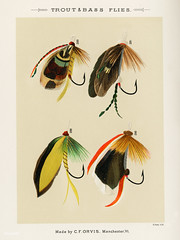 Trout and Bass Flies from Favorite Flies and Their Histories b (Free Public Domain Illustrations by rawpixel) Tags: americanartificialflies americanflypattern antique artificial artificialfly bait bass bassflies bug catch collection design drawing faded favoriteflies fishing fishingflies flies flshing fly flyfishing group handdrawn illustration insect marbury maryorvis maryorvismarbury old pattern poster publicdomain sepia set sketch vibrant vintage