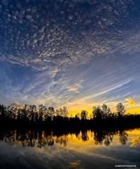 Sunset - 6 frame V pano (JSB PHOTOGRAPHS) Tags: nd31586 nd31586stitch panorama pano autzenstadium pond sky clouds trees nikon d3 28300mm sunset