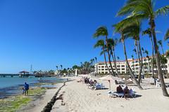 Key West (Florida) Trip 2017 7557Ri 4x6 (edgarandron - Busy!) Tags: florida keys floridakeys keywest casamarina