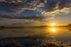 Early Morning (mindaugasmalakauskas) Tags: green nature landscape lake water sun sky clouds sunrise light nieuwe meer nieuwemeer amsterdam netherlands amsterdamsebos