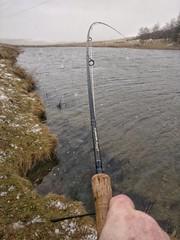 Madness :) (poach01) Tags: fishing flyfishing orvis pond