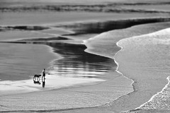 Paseo entre amigos... (Osruha) Tags: ribadesella asturias asturies españa espanya spain paseo passeig walks amistad amistat friendship blancoynegro blancinegre blackandwhite bn bw bnw monocromo monocrom monochrome playa platja beach nikon nikonistas d750