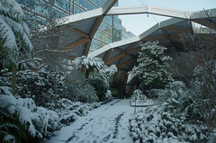 IMGP0482 (mattbuck4950) Tags: england unitedkingdom europe gardens lenssigma18250mm photosbymatt february snow london camerapentaxk50 canarywharf 2018 crossrailplace londonboroughoftowerhamlets gbr