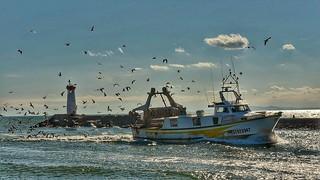 Retour de pêche.!  Fishing return !