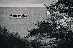 Und am Ende der Straße steht ein Haus am See (michael_hamburg69) Tags: heiligenhafen germany deutschland kreisostholstein schleswigholstein wagrien ostsee balticsea unterwegsmitandy hausamsee steinwarder