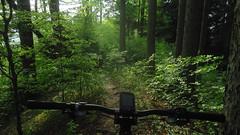 Heuberg (twinni) Tags: mw1504 25042018 bike biketour mtb heuberg salzburg austria österreich flachgau frühling bergziege winterradl winterbike 20