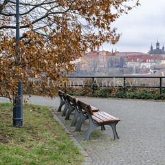 A place of leisure with a view on the old Prague (Ivanov Andrey) Tags: park bench footpath autumn oak outdoor redhead pavement stone block castlewall castle morning roof shingles chimney mist architecture history future tower spire medieval lattice lock gate arch christianity church temple river sky cloud city horizon cold blue sun sidewalk walk travel urbanskyline vltava prague czechrepublic ngc