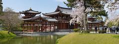 Byodoin Temple,Uji,Kyoto,Japan (kkanok403) Tags: byodoin temple uji kyoto japan sony a7ii sakura panoramas fe 70200mm f4 g oss