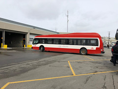 TTC electric bus livery concept (apta_2050) Tags: torontotransitcommission ttc proterra catalyst proterracatalyste2 electricbus citybus transitbus branding livery graphicdesign photoshop toronto ontario