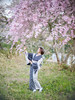 Under the cherry tree (HarQ Photography) Tags: zhongyioptics speedmaster85mmf12 fujifilm fujifilmxseries gfx50s portrait japan nara spring sakura cherryblossom kimono model