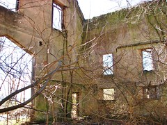 THE OLD MULE BARN RUIN IN APRIL 2018 (richie 59) Tags: ulstercountyny ulstercounty newyorkstate newyork unitedstates trees kingstonny kingston rondoutny rondout downtownkingstonny downtownkingston abandoned vacant spring richie59 overgrown abandonedbuilding vacantbuilding america outside weekday friday downtown 2018 april202018 april2018 2010s hudsonvalley midhudsonvalley midhudson ny nys nystate usa us city smallcity urban concretebuilding oldconcretebuilding oldbuilding weeds grass ruin rotting building vines obsolete burnedout