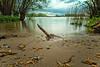 Hoekse Waard 20180428-020 (Kingfisher-1) Tags: water longexposure leefilters leend09grad bigstopper tree shovel sand hollande méridionale holland oudemaas river
