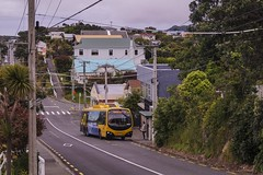 Brooklyn - Mills Road (andrewsurgenor) Tags: transit transport publictransport nzbus gowellington electric trackless trolleybus trolleybuses wellington nz streetscenes bus buses omnibus yellow obus busse citytransport city urban newzealand