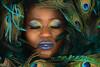 Sleeping with the Feathers (PVA_1964) Tags: nikon d850 model female woman girl studio africanamerican black blue mua samys samyscamera ann modelmayhem cls radiocls wirelessflash sb5000 westcott apollo apolloorb wr10 ttl