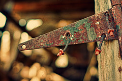 Unhinged (Dave Linscheid) Tags: barn door hinge decay abandoned bokeh wood texture textured country farm rural agriculture butterfield watonwancounty mn minnesota usa bolt nut paint rust