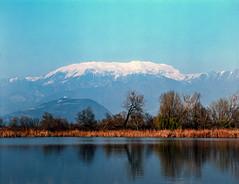 Zen zone (Italian Film Photography) Tags: landscape water lake mountain blue trees snow peaceful zen film analogue zenzabronica etr fujifilm slide colors e6 120 velvia50