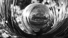 Palantir 02 (byronv2) Tags: palantir seeingstones lordoftherings sculpture globe ball shiny metal silver wire georgesquare gardens park spring sunny sunshine sunlight shadows blackandwhite blackwhite bw monochrome edinburgh edimbourg scotland art