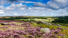 Longshaw Lodge (Peter Quinn1) Tags: nationaltrust longshawestate derbyshire overowlertor sheffield moorland heather summer latesummer