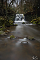 Flow (Zoom In, Click On, Check Out) Tags: yellow goit stock falls goitstockfalls yorkshire waterfall west westyorkshire canon camcam river stream water stones stone moss rocks current green trees forest