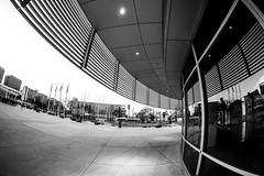 San Jose City Hall, San Jose, CA (Thomas Hawk) Tags: america california cityhall photowalk sjphoto2011 sanjose sanjosecityhall southbay usa unitedstates unitedstatesofamerica architecture bw fav10
