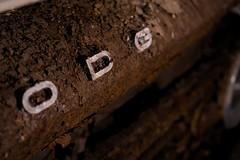 Dodge2 (tonyengle) Tags: sony a6000 alpha sel35f18 godox dodge d100 rust rustic abandoned flash