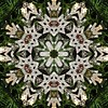 Kaleido Abstract 1790 (Lostash) Tags: art shapes forms textures symmetry reflection kaleidoscope edited