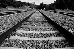 Hasta el infinito y más allá. To infinity and beyond. (.Guillermo.) Tags: bw blancoynegro tren via blackandwhite estación