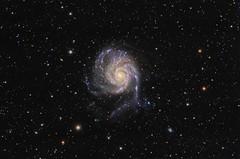 M101 Pinwheel Galaxy (Waskogm) Tags: maksutov newtonian mn mn190 maksutovnewtonian mak newt maknewt azeq6 cassegrain aristarh aristarchus nostromo observatory backyard amateur astronomy astrophotography nature space cosmos svemir universe pinwheel m101 messier m 101 galaxy galaksija stars sky night black waskogm wasko