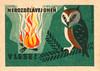 czechoslovakian matchbox label (maraid) Tags: czechoslovakia czech czechoslovakian matchbox label packaging fire safety advice campfire owl flames bird tree camping