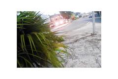 """Exploring the Morning ..."" (Guilherme Alex) Tags: city cityscape morning world street road plant light reflection frame picture cars bus teofilootoni minasgerais brazil art angle imperfection"