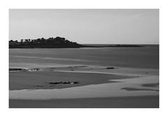 """Truc Du Soir"" (The Blue Water Lily's Company) Tags: fdrouet nb bw monochrome monochrom mer sea locquirec longexposure poselongue bretagne brittany nikon d90"
