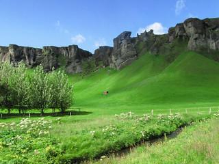 Green cliffs at the south coast